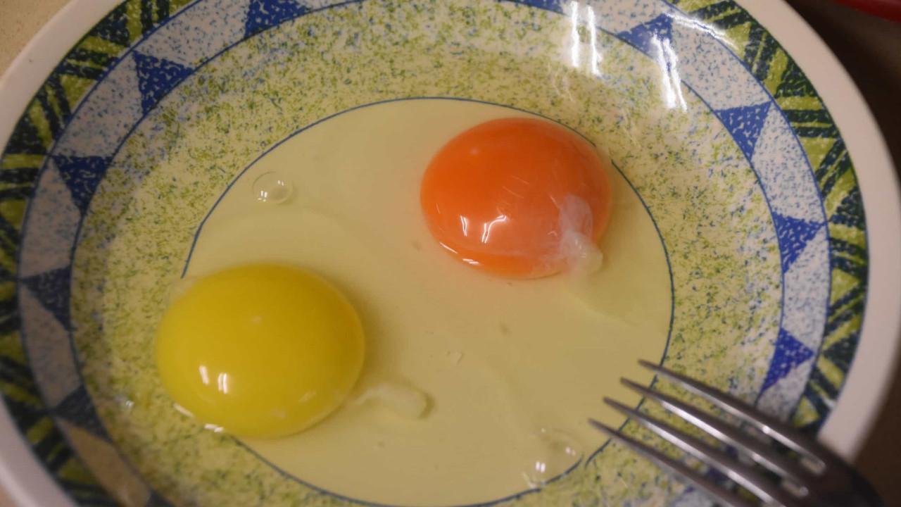 Entenda a importância da cor das gemas de ovo (vai ficar surpreendido)