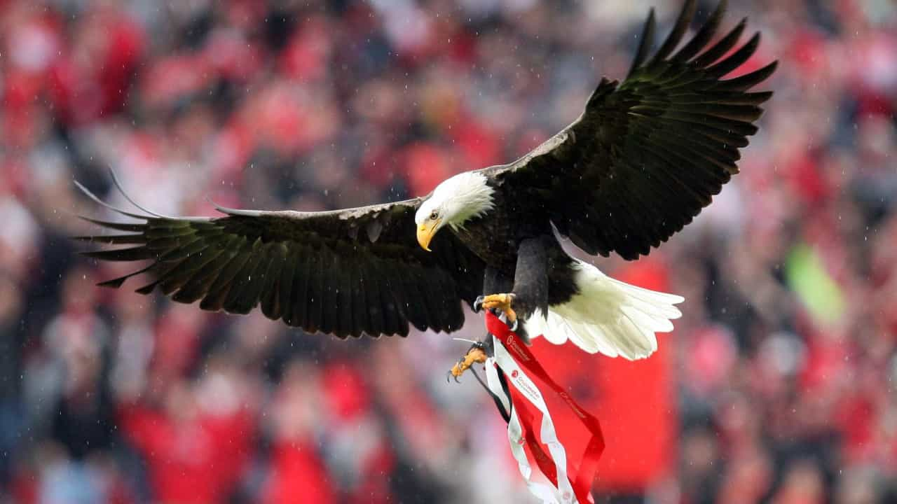 Benfica-Famalicão: Último voo do ano frente a rival a sonhar com Alvalade