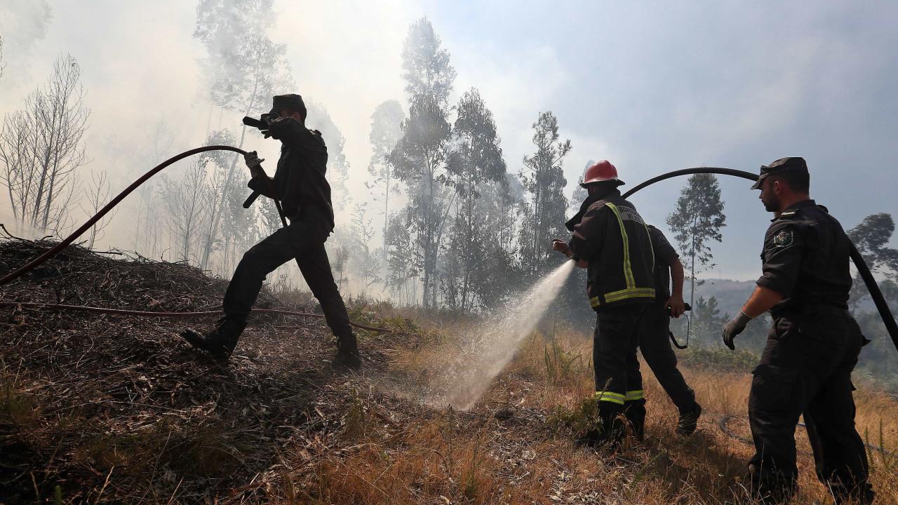 Resultado de imagem para Aumenta para dez número de feridos no fogo da Sertã: nove bombeiros e um civil