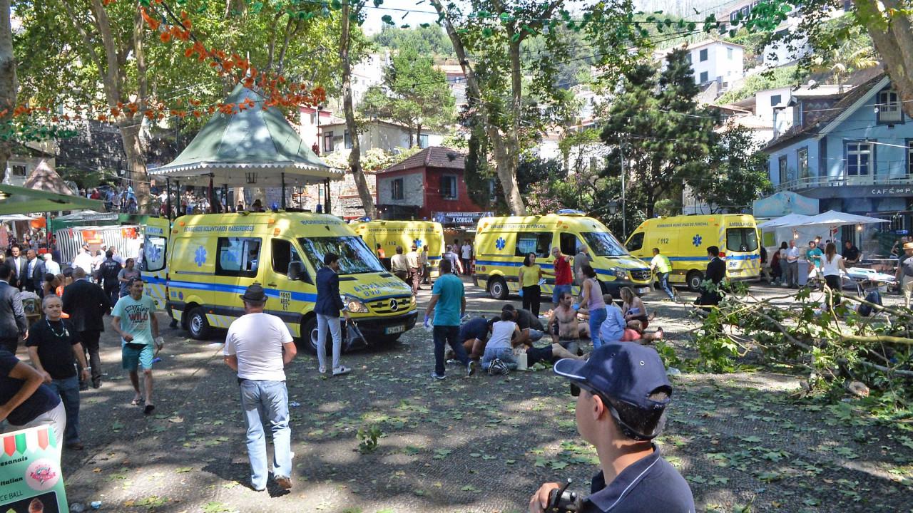 Adiada sessão instrutória do caso da queda da árvore no Funchal - Notícias ao Minuto