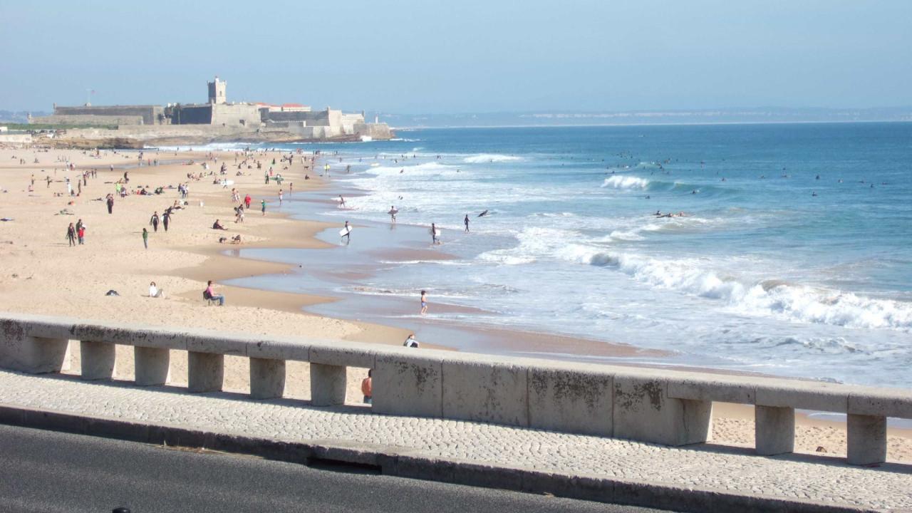 www.noticiasaominuto.com