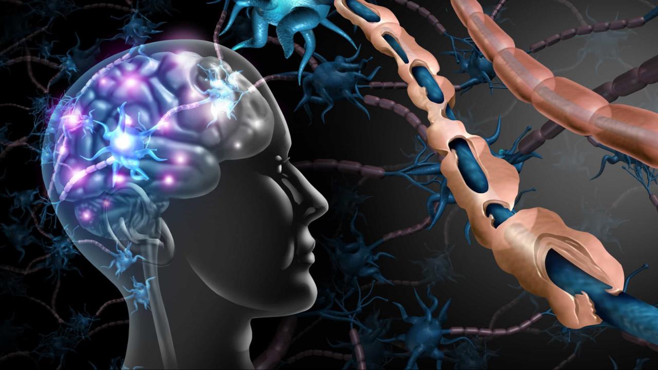 Esclerose lateral amiotrófica: Pneumologia é crucial para os doentes