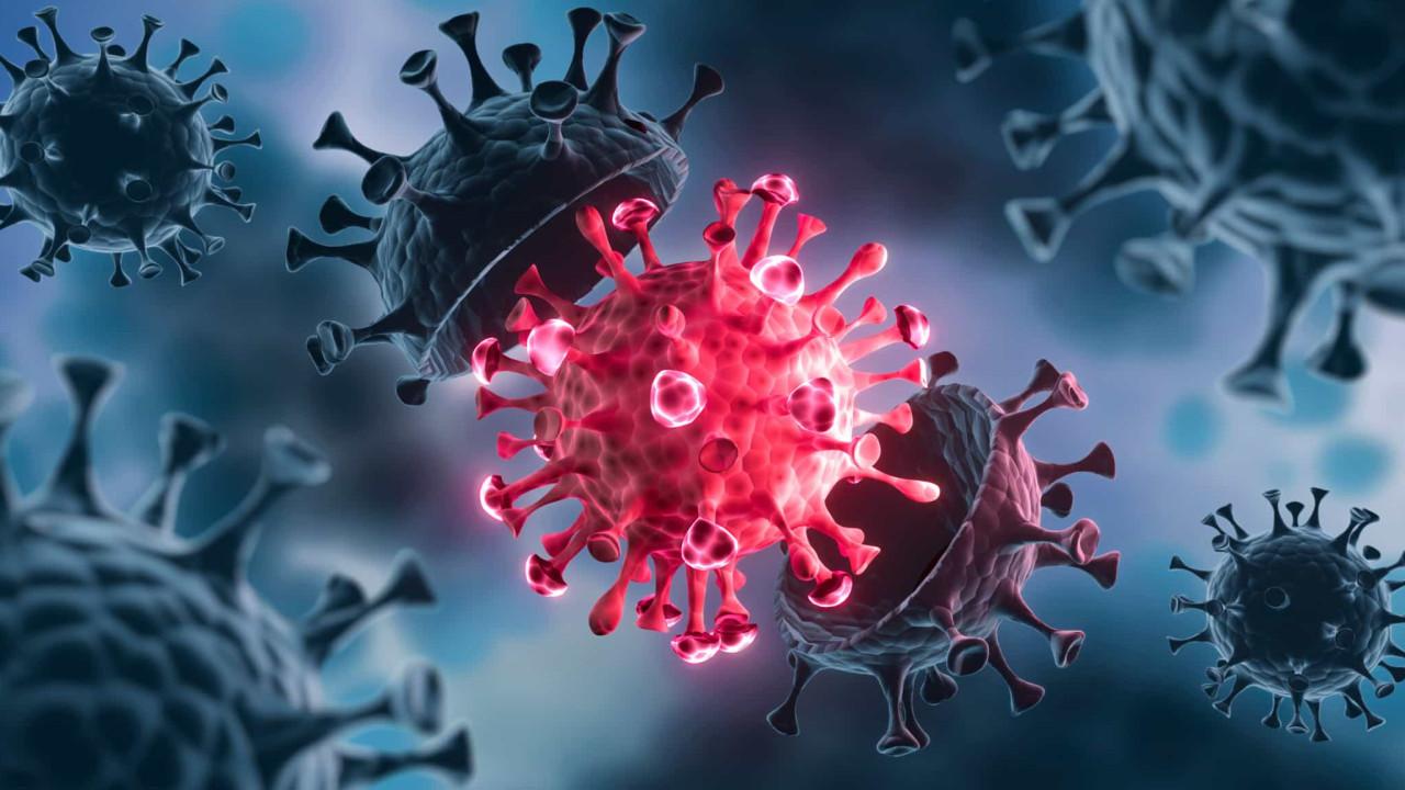 Variante Gamma (P.1) é mais mortífera e transmissível, alerta estudo