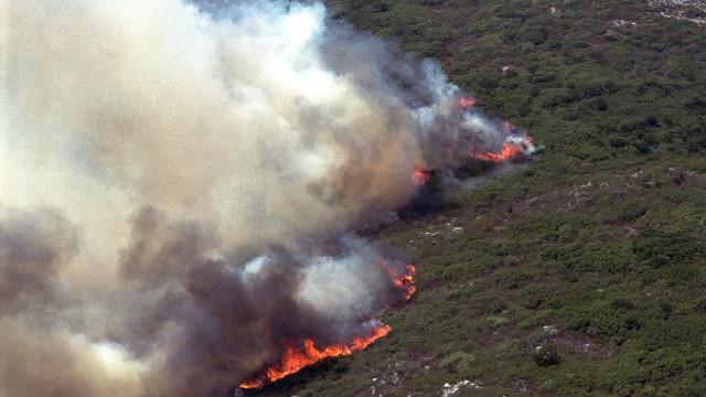 Fogo em área de mato no Parque Natural da Arrábida