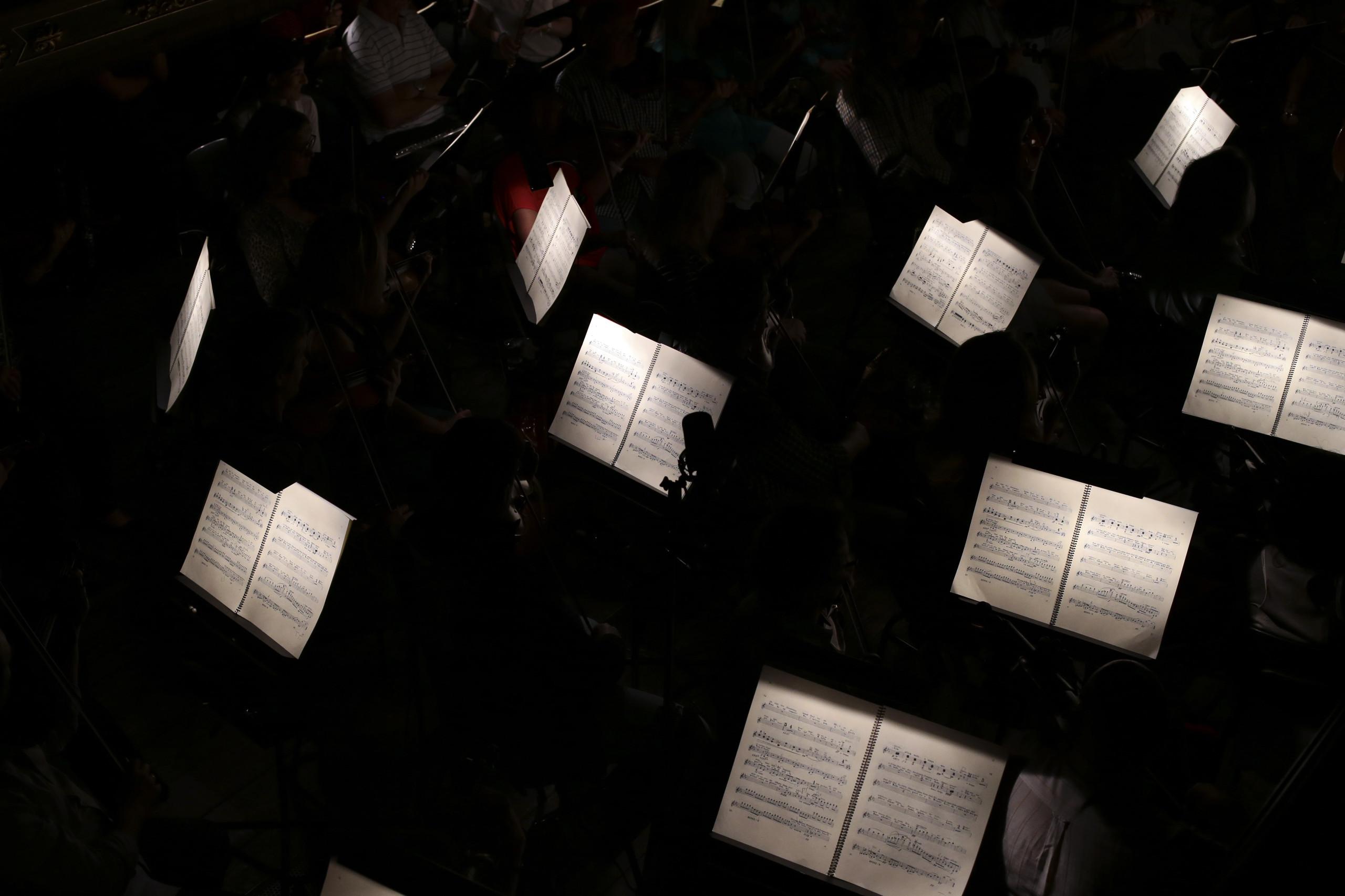 Nova temporada de orquestra europeia com 22 músicos portugueses