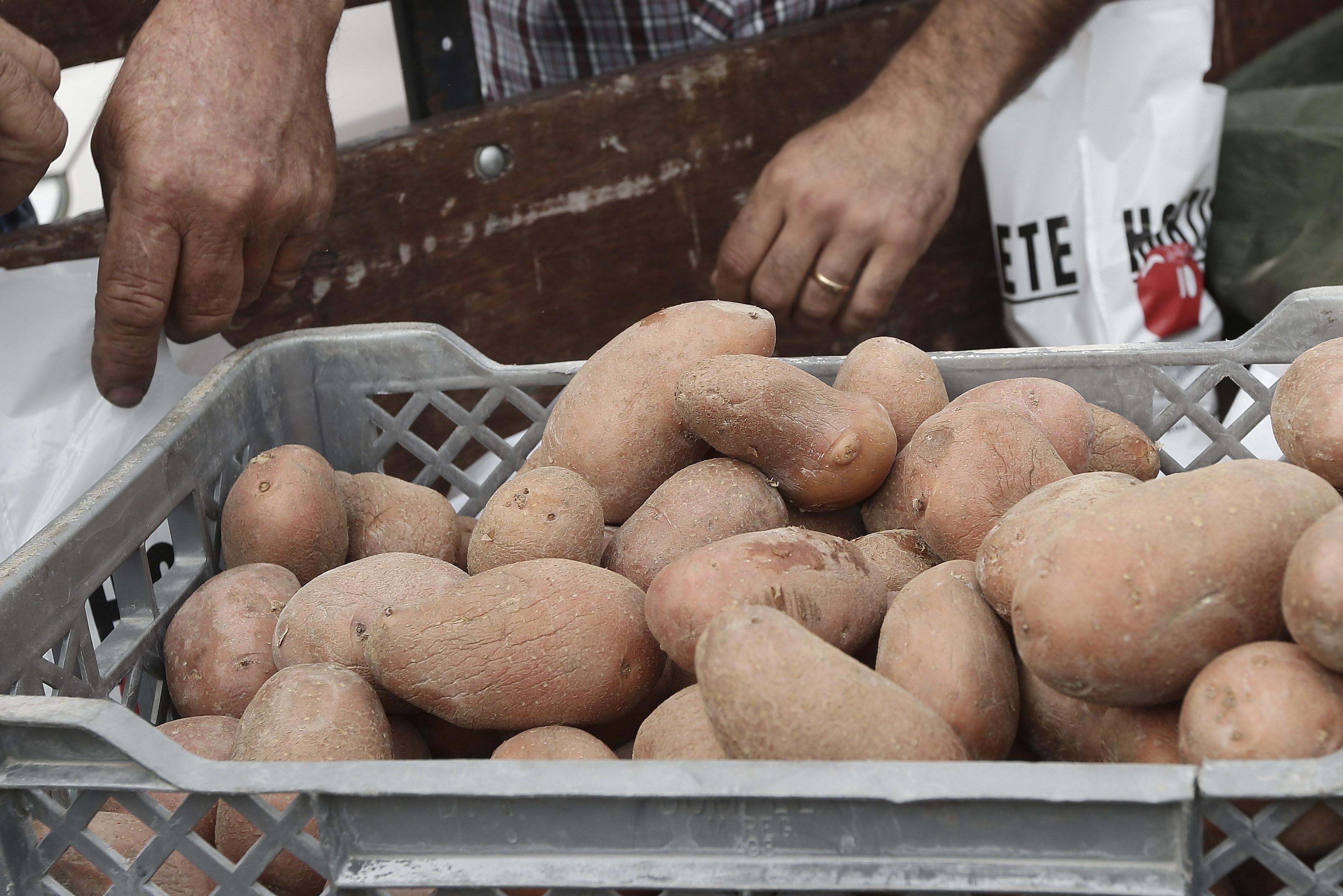 Exportação de batatas para Qatar é passo importante