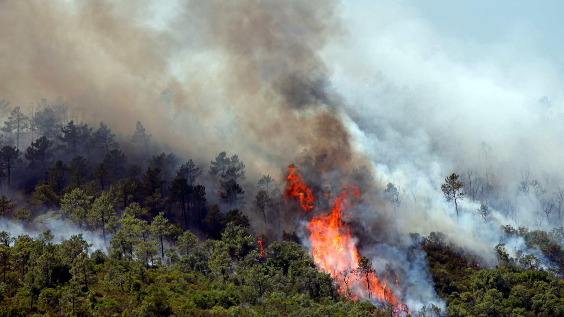 Avião de combate a incêndios cai em Ferreira do Zêzere. Piloto está bem
