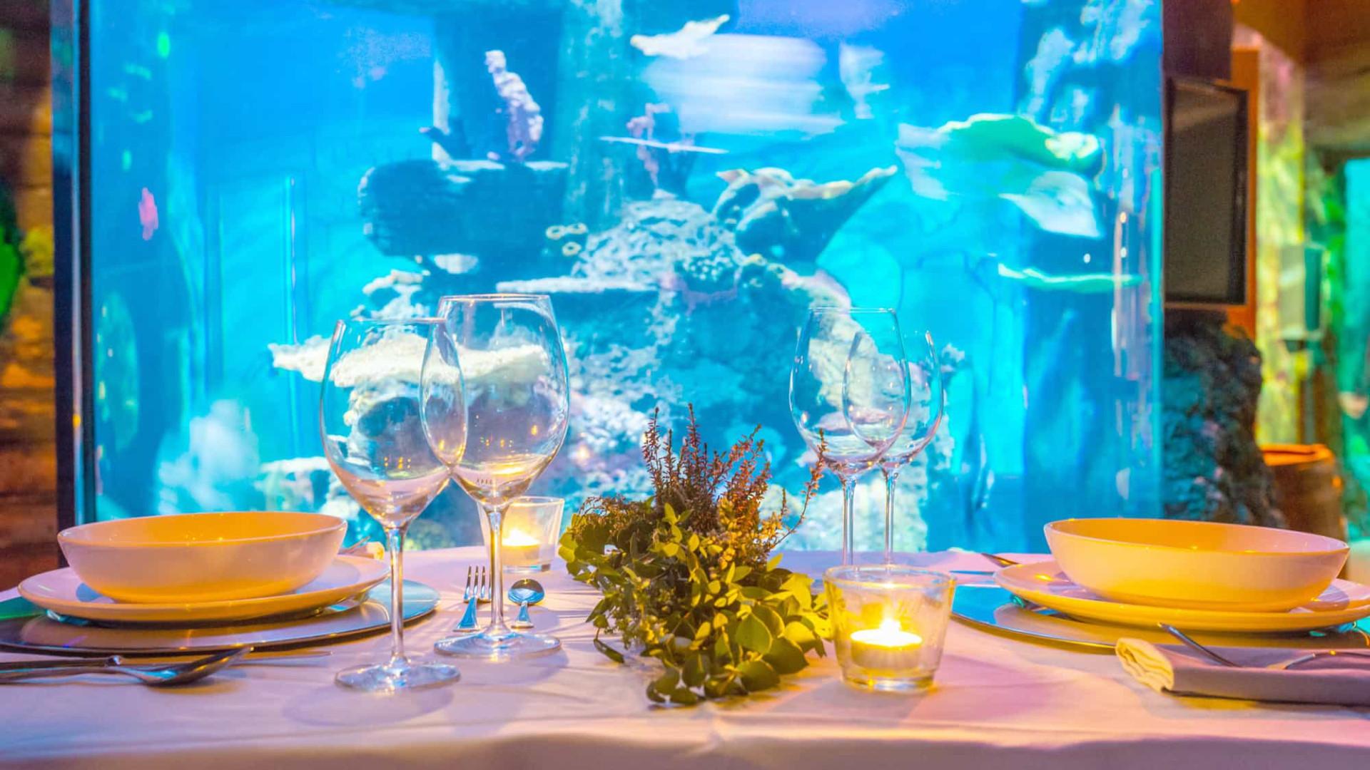 O SEA LIFE convida-o para um jantar de São Valentim 'debaixo de água'