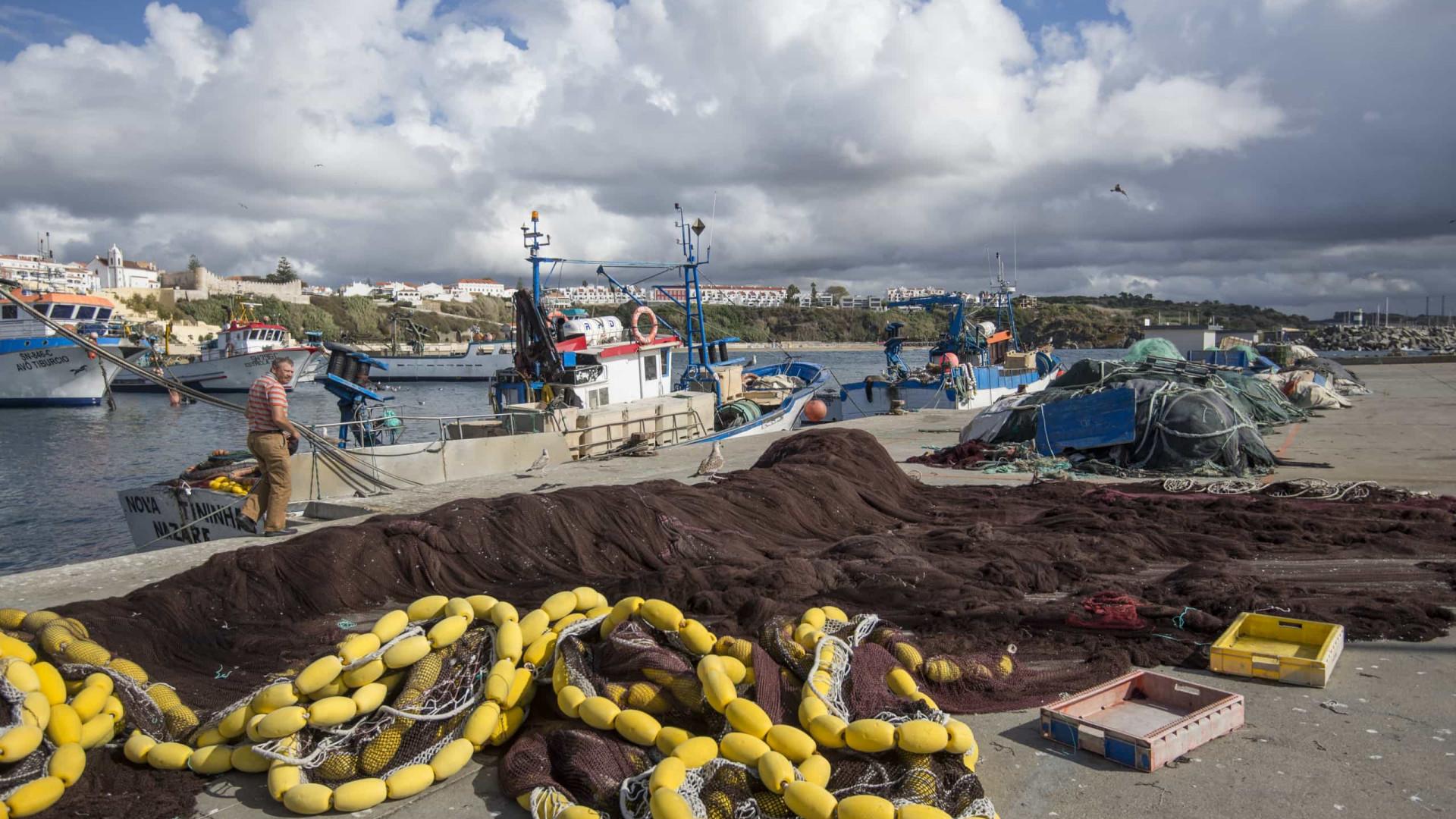 Aprovados 1,6 milhões em apoios às paragens temporárias na pesca