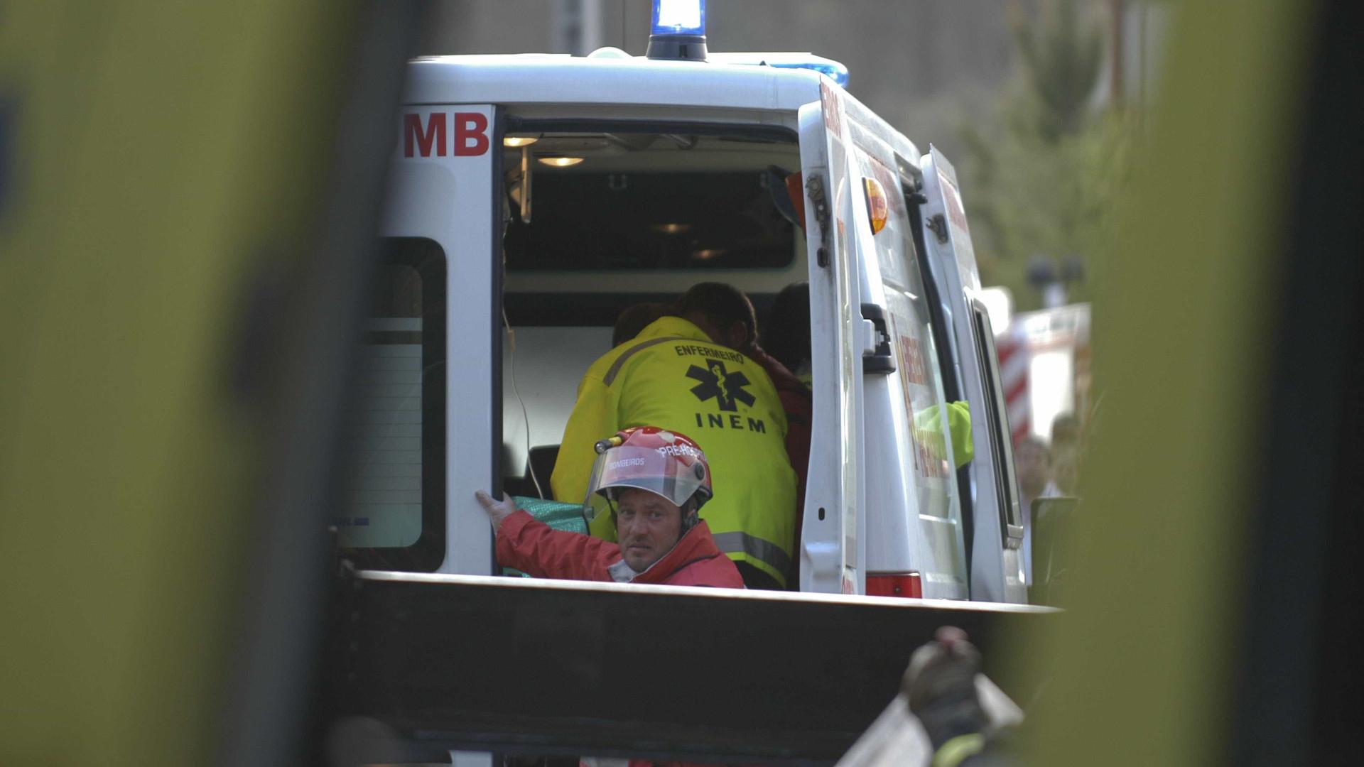 Homem morre em queda da árvore que estava a cortar em Vila do Conde