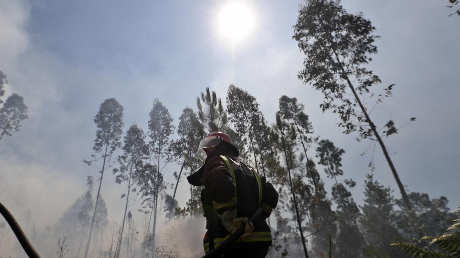 Encontrado um morto em incêndio rural em Viseu