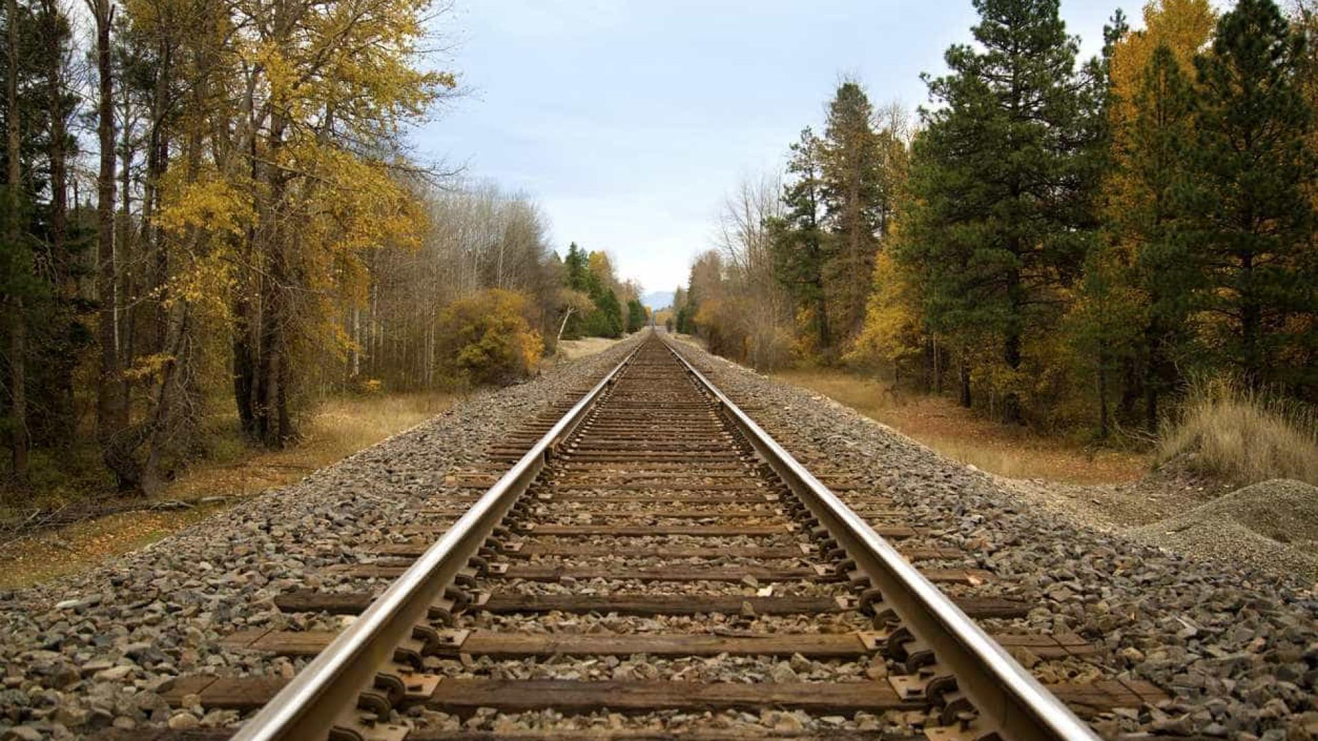 IP prevê investir mais de 225 milhões na rede rodoviária e ferroviária