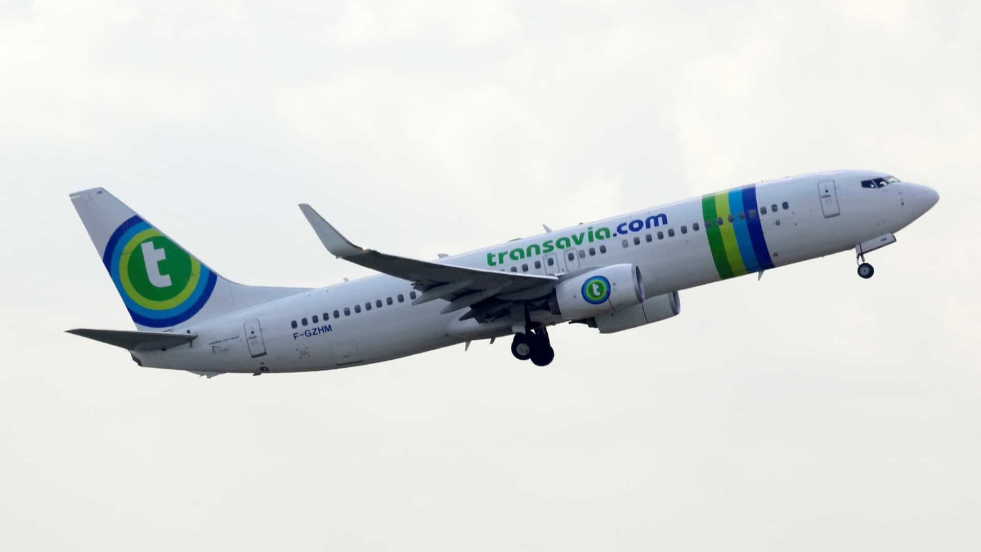 Resultado de imagen para Transavia Funchal