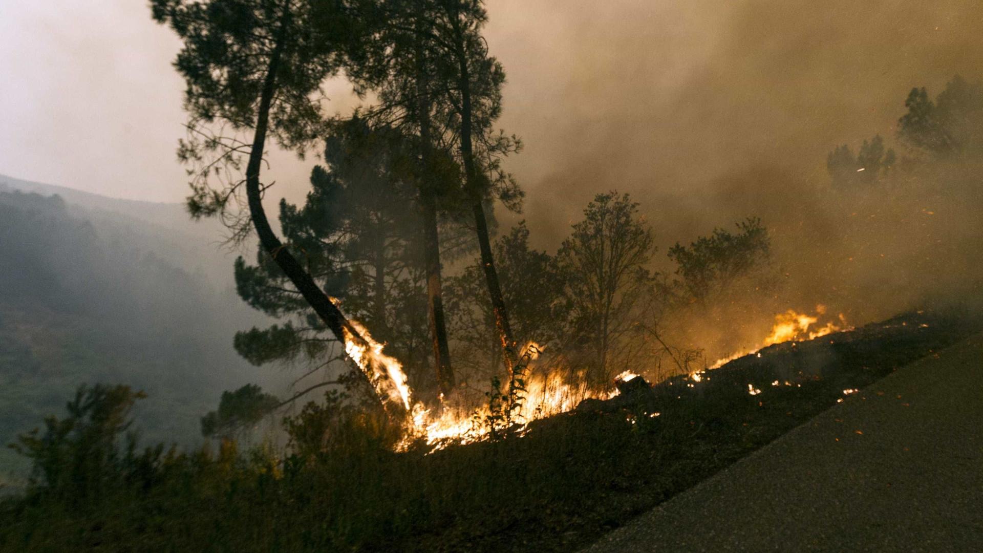 Empresas Em Arcos De Valdevez idosa morre em incêndio agrícola em arcos de valdevez