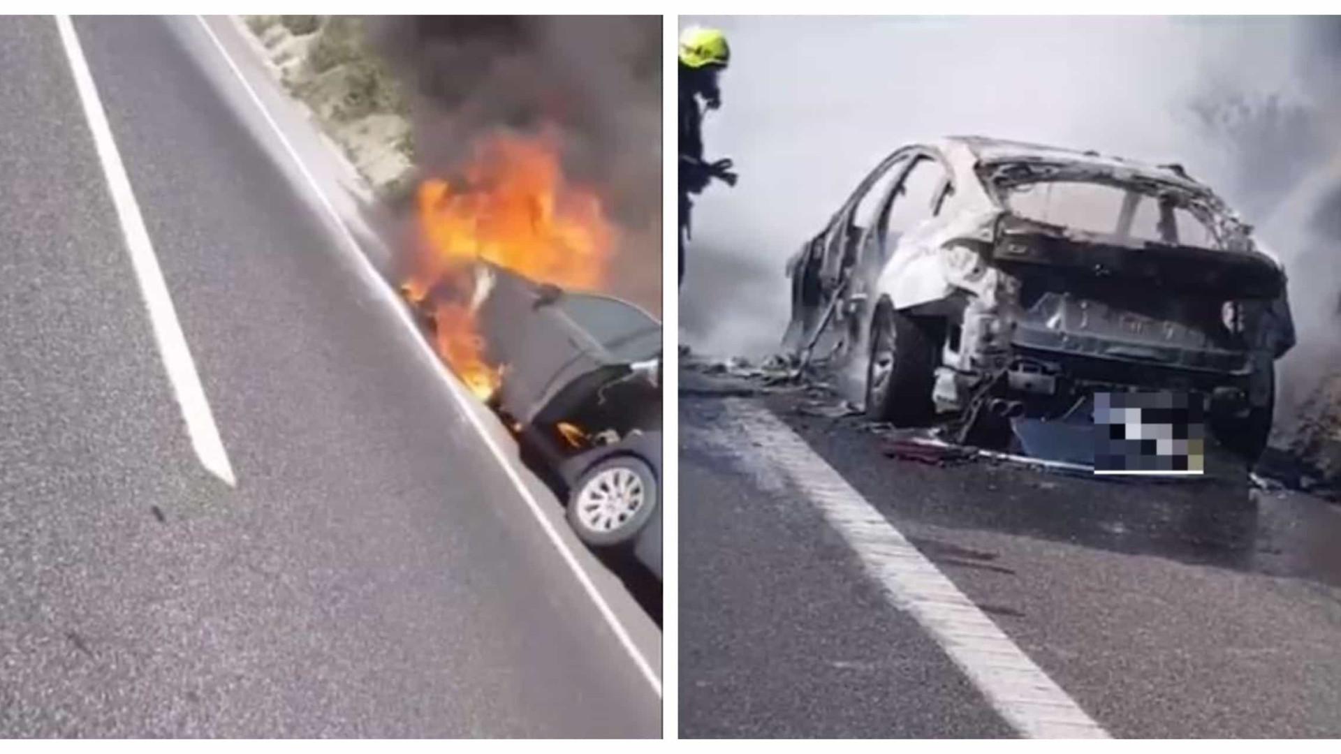Carro incendiou-se na A1. Veja as imagens