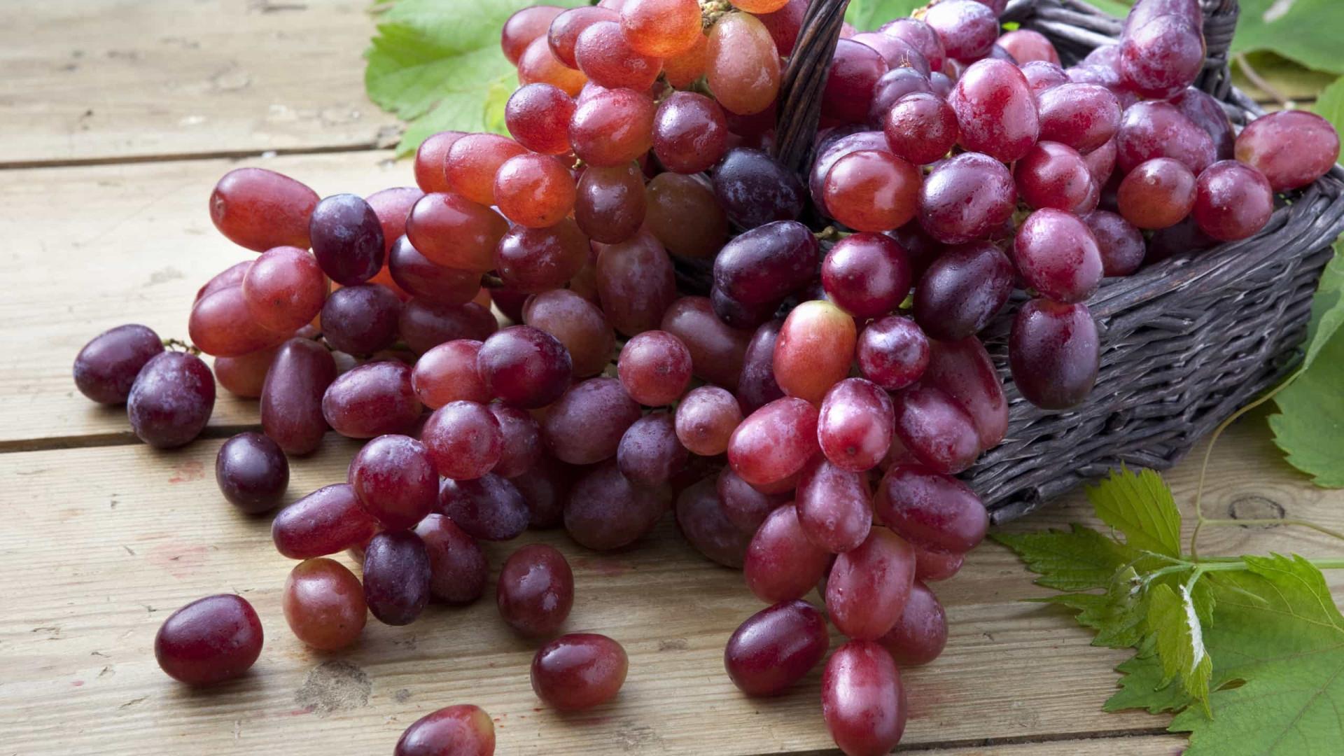 Como as uvas podem retardar o envelhecimento e promover a longevidade