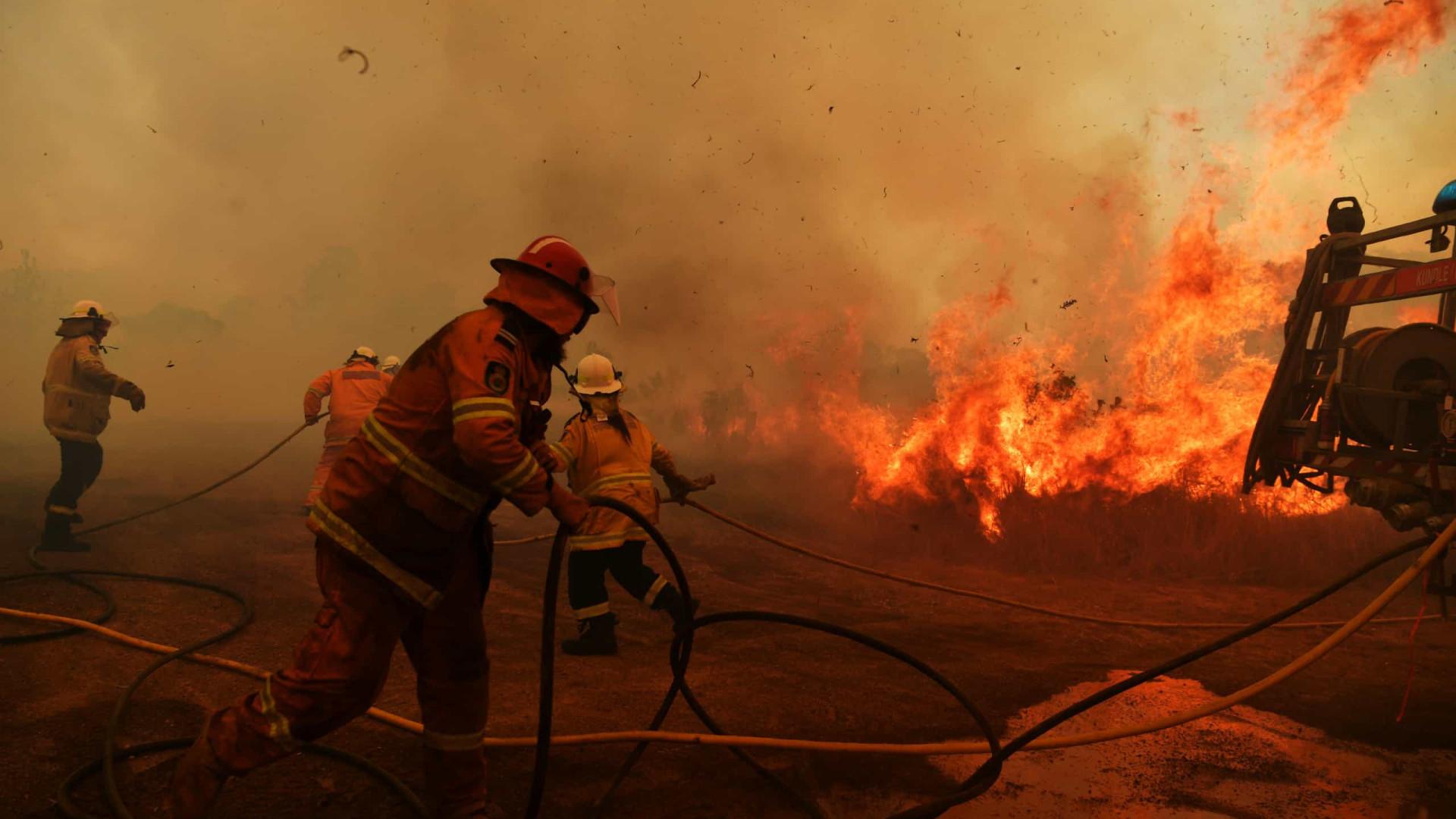 """Austrália em alerta """"catastrófico"""". Calor e vento podem piorar incêndios"""
