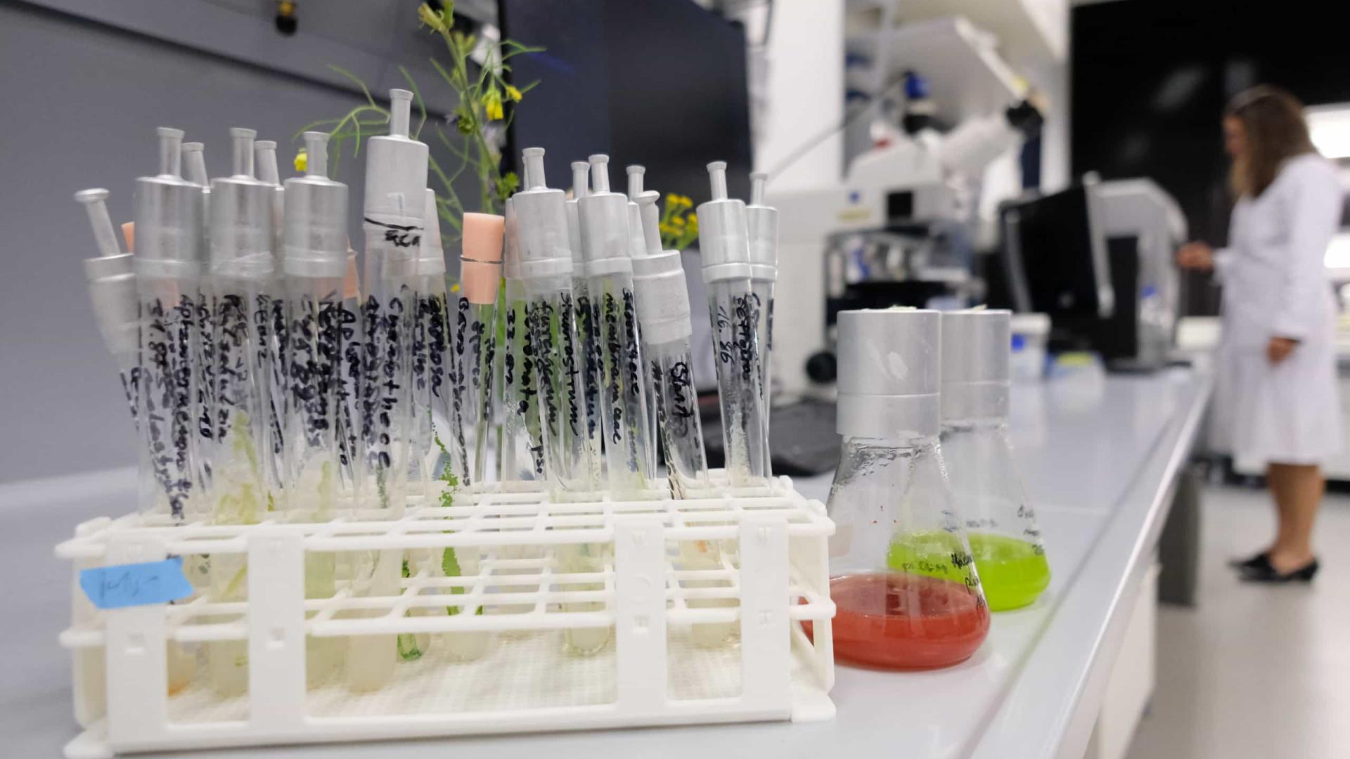 AO MINUTO: Nova redução nos internamentos; Vacinas de 2.ª geração em 2022