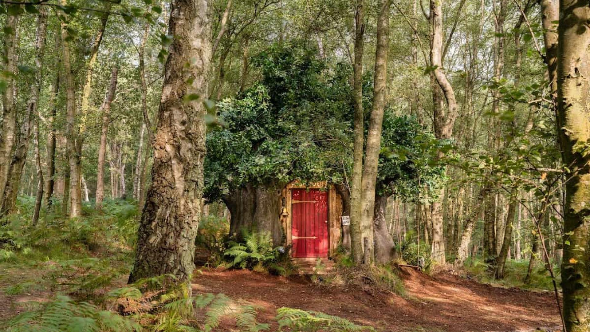 Casa de 'Winnie the Pooh' disponível para arrendar no Airbnb