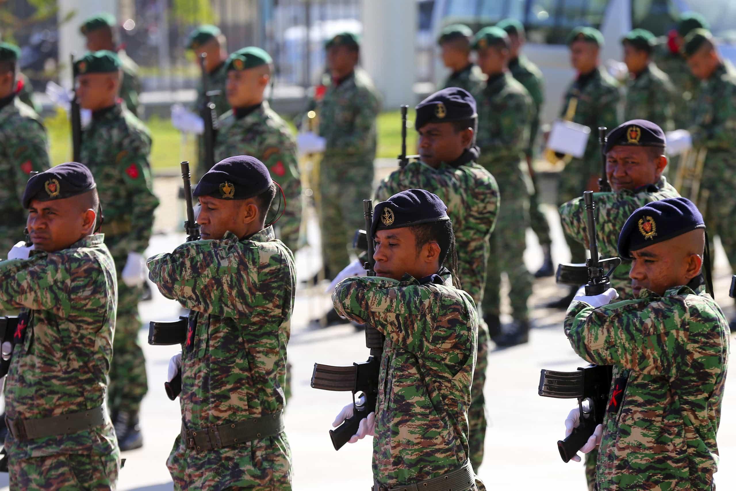 Desfile militar assinala centenário do Armistício da Grande Guerra