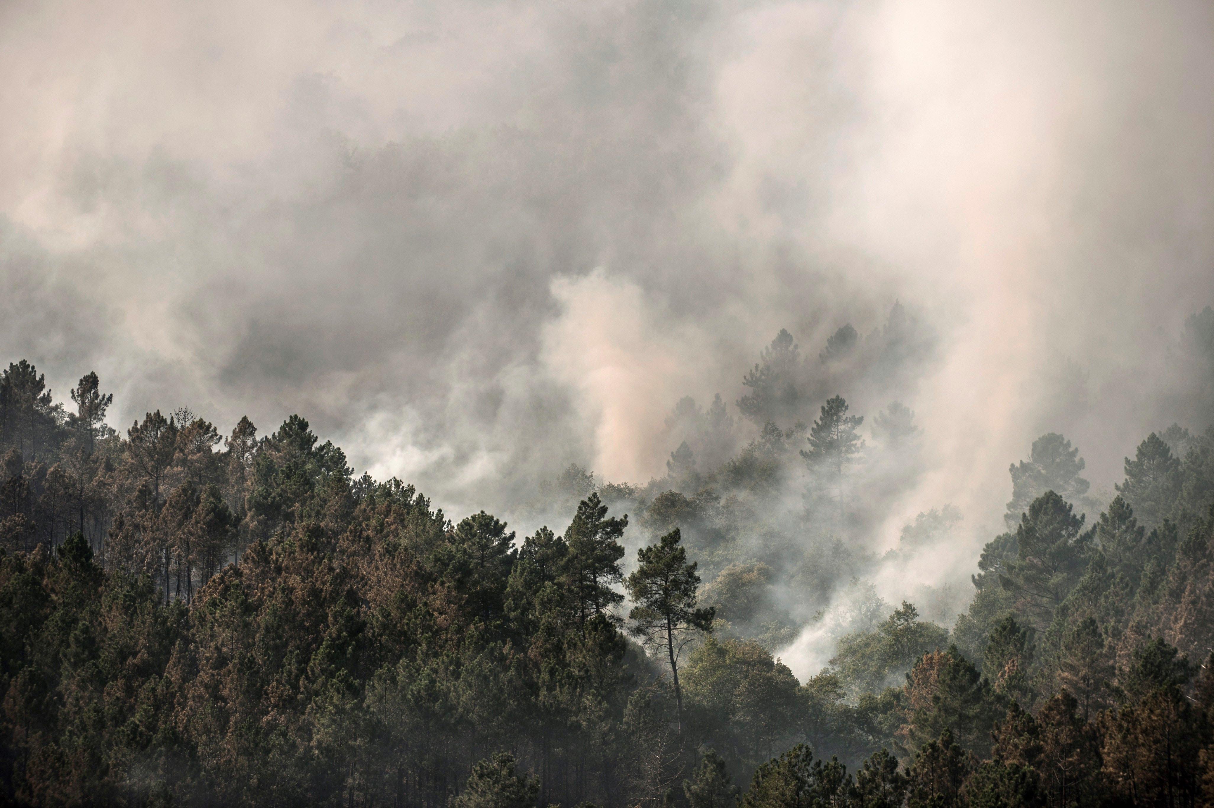 Incêndio lavra no parque natural galego de Xurés e já queimou 40 hectares