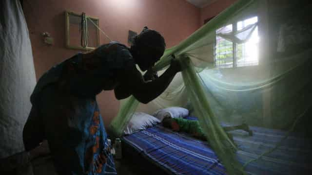 Malária em Angola provocou mais de 25 mil mortes nos últimos dois anos
