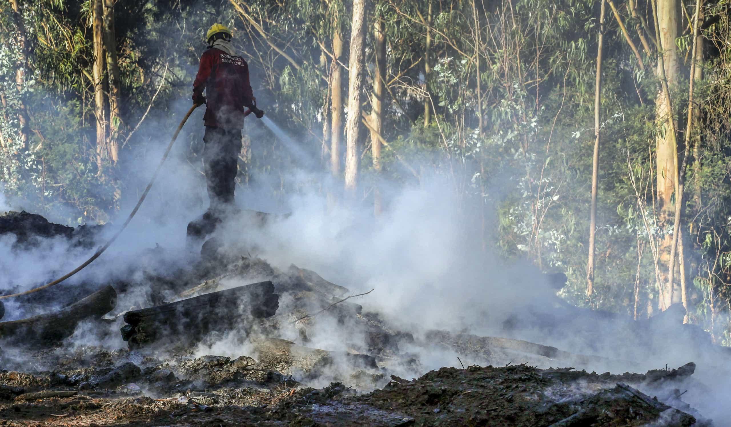Incêndio em Proença-a-Nova em fase de rescaldo