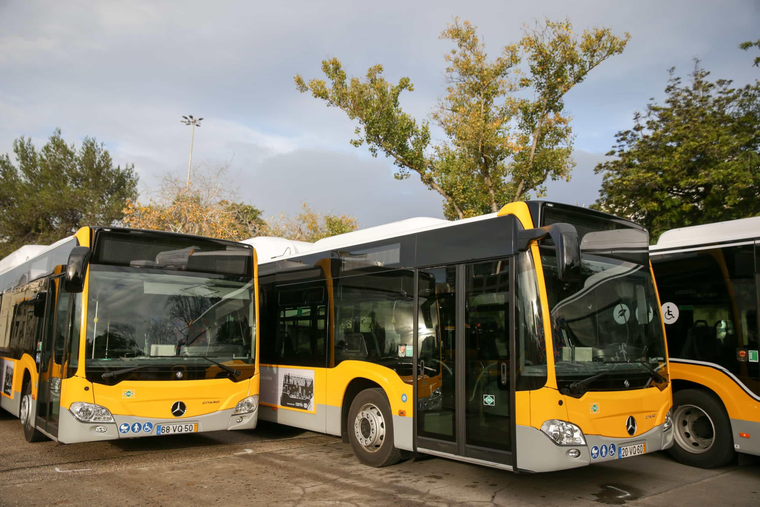 Até ao final do ano há concurso público para reforçar rede de autocarros
