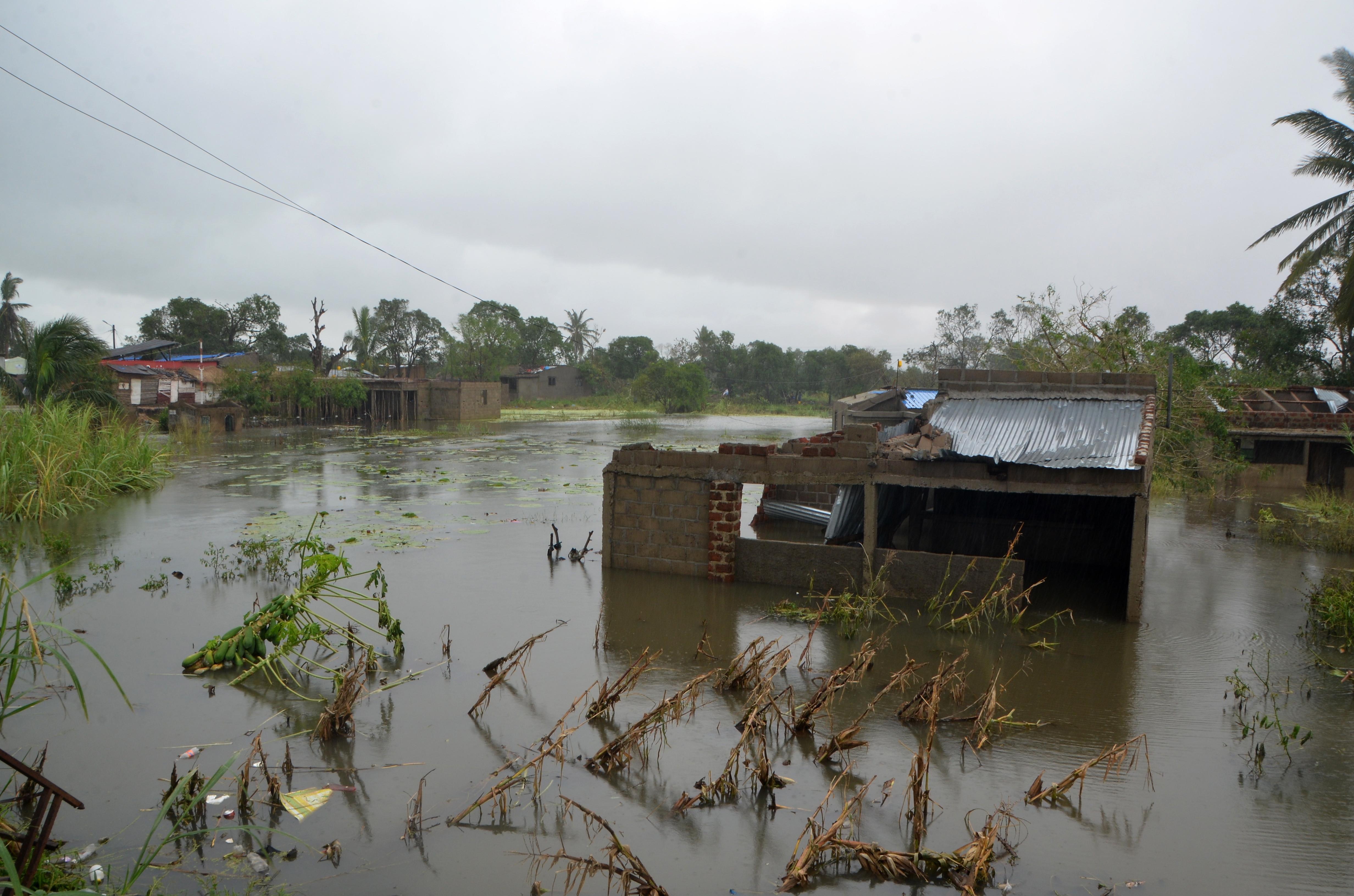 Frio e fome, desafios para quem sobreviveu ao ciclone em cima de árvores