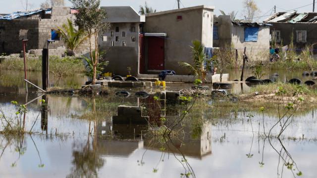 Português resgatado com vida por equipa de fuzileiros em Moçambique