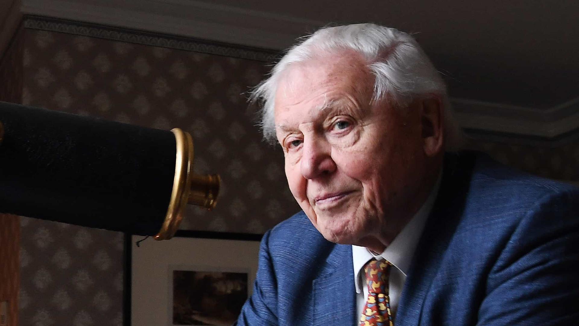 Attenborough pede medidas urgentes para combater alterações climáticas