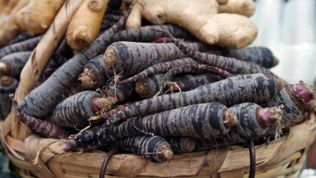 Já ouviu falar da cenoura preta? Cinco benefícios incríveis do vegetal