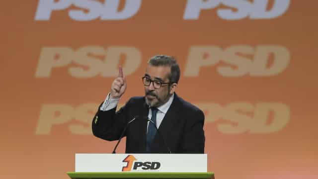 """Rangel considera natural ver PS """"a pescar"""" no mesmo distrito que o PSD"""