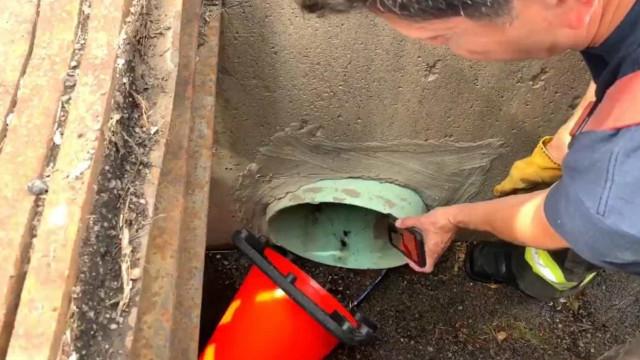 Bombeiros usam vídeos do YouTube para resgatar patinhos presos em cano