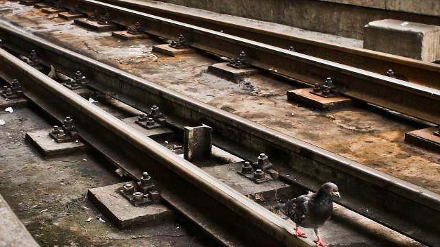 Circulação ferroviária cortada em Ovar devido a descarrilamento