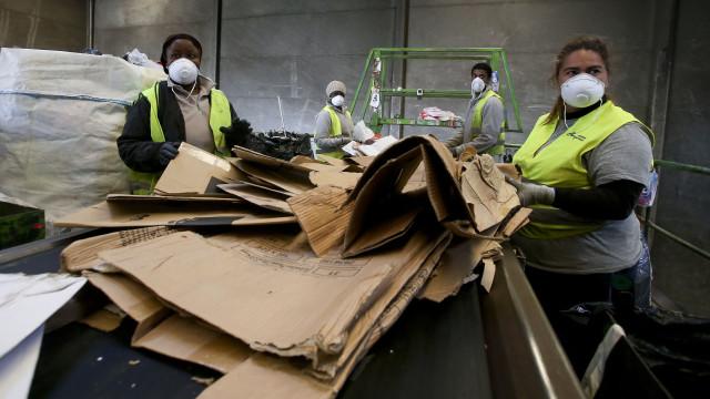 Reciclagem cresceu 11% em Portugal no primeiro semestre do ano