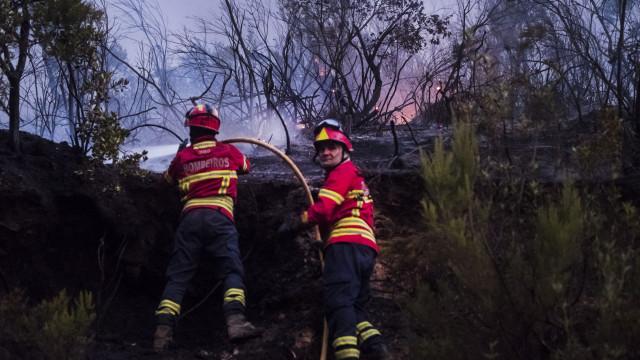 Fogo em quinta na freguesia de lisboeta de Carnide dado com extinto