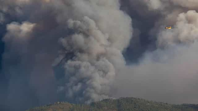 Mação. Quinze aldeias da freguesia de Cardigos ameaçadas pelas chamas