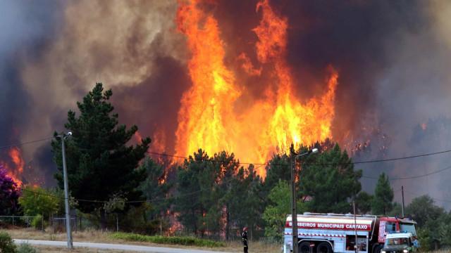 Mais de 9.500 hectares arderam em Vila de Rei e Mação