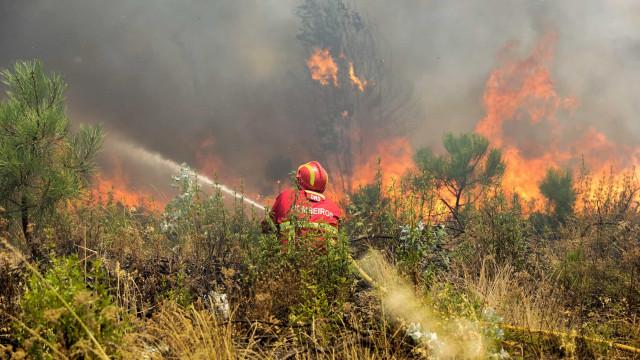 Proteção Civil alerta para maior risco de incêndio nos próximos dois dias