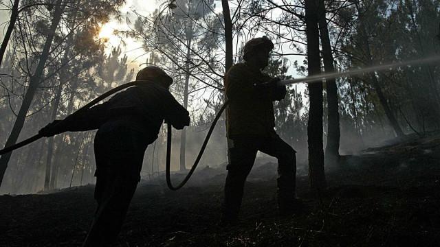Proteção Civil alerta. Calor está de volta e risco de incêndios também