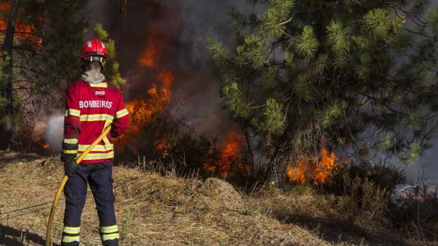 Quarenta concelhos de oito distritos em risco máximo de incêndio