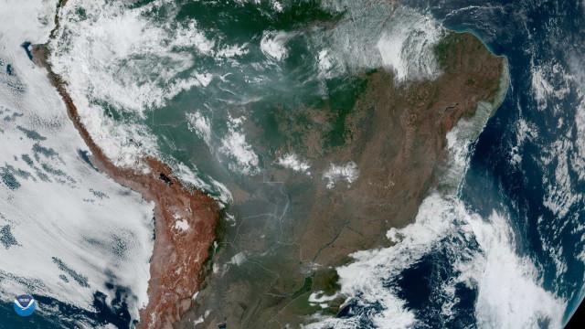 """Focos de incêndio na Amazónia """"estão relacionados com a desflorestação"""""""