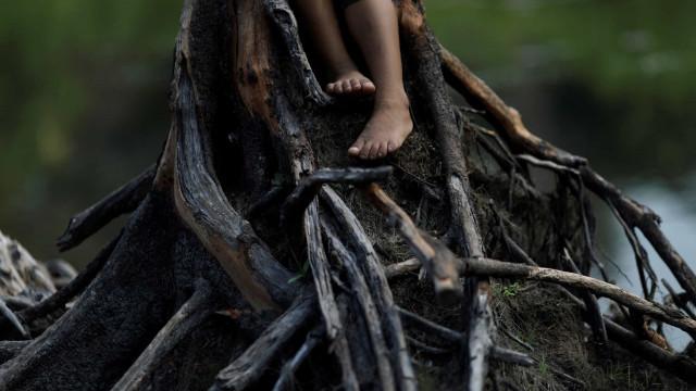 """""""Se for preciso, dou a minha última gota de sangue pela Amazónia"""""""