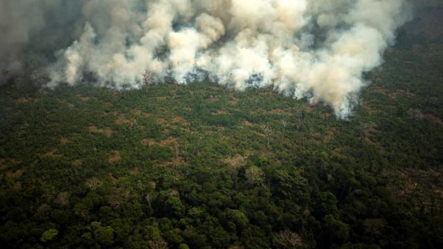 Brasil envia aviões e 44 mil soldados para combater fogos na Amazónia