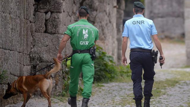 Buscas por homem de 85 anos desaparecido em Pinhel retomadas hoje