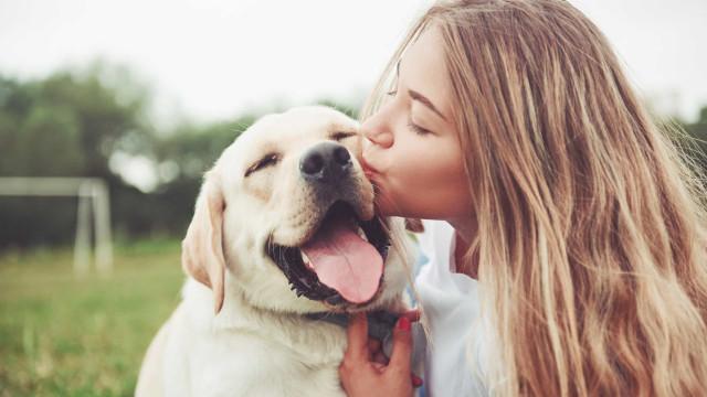 Ter um cão ajuda-o a viver mais, garante nova pesquisa
