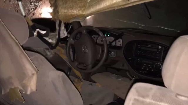 Agentes polícia salvam urso preso dentro de carro na Califórnia
