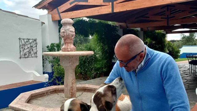 Vídeo: Cães de Manuel Luís Goucha recebem-no alegremente em casa