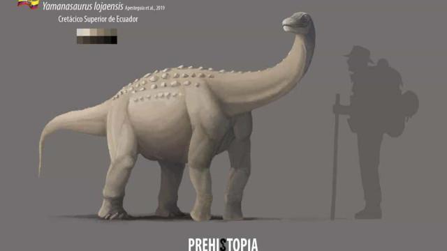 Universidade do Equador anuncia descoberta de nova espécie de dinossauro
